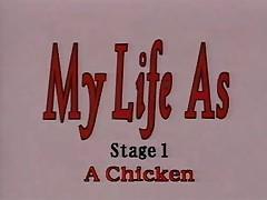 Chtob ja tak zhil... (My Life As - A Chicken)